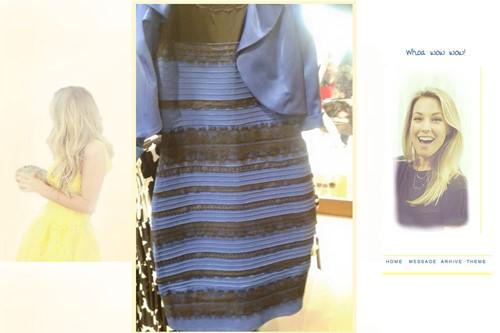 Zwart Wit Jurkje.Is De Jurk Nou Blauw Zwart Of Wit Goud Body Worlds Amsterdam